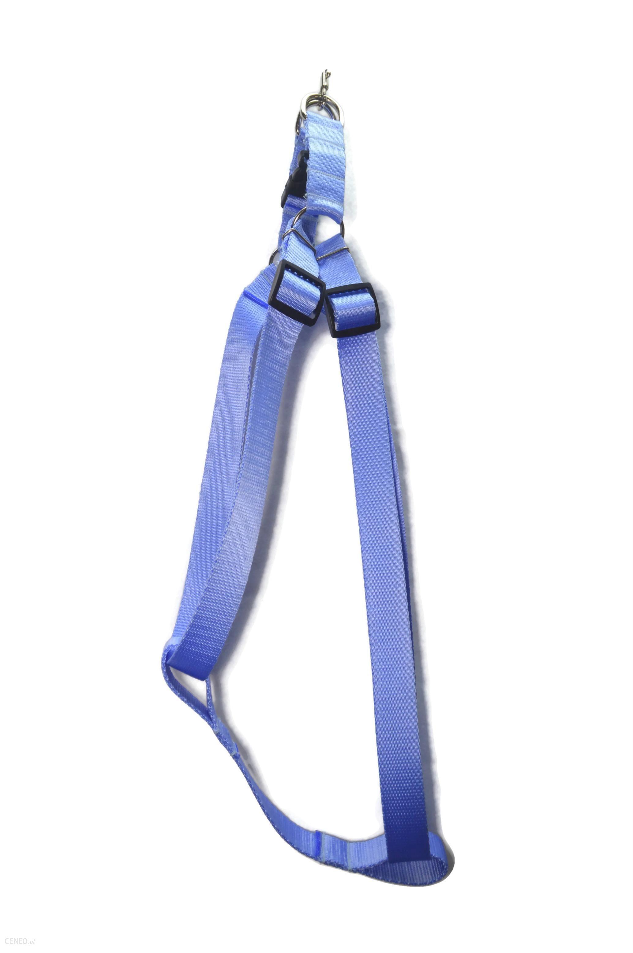 Alizoo Dla Dużego Psa 30mm Górne Zapięcie Błękitny (A053)