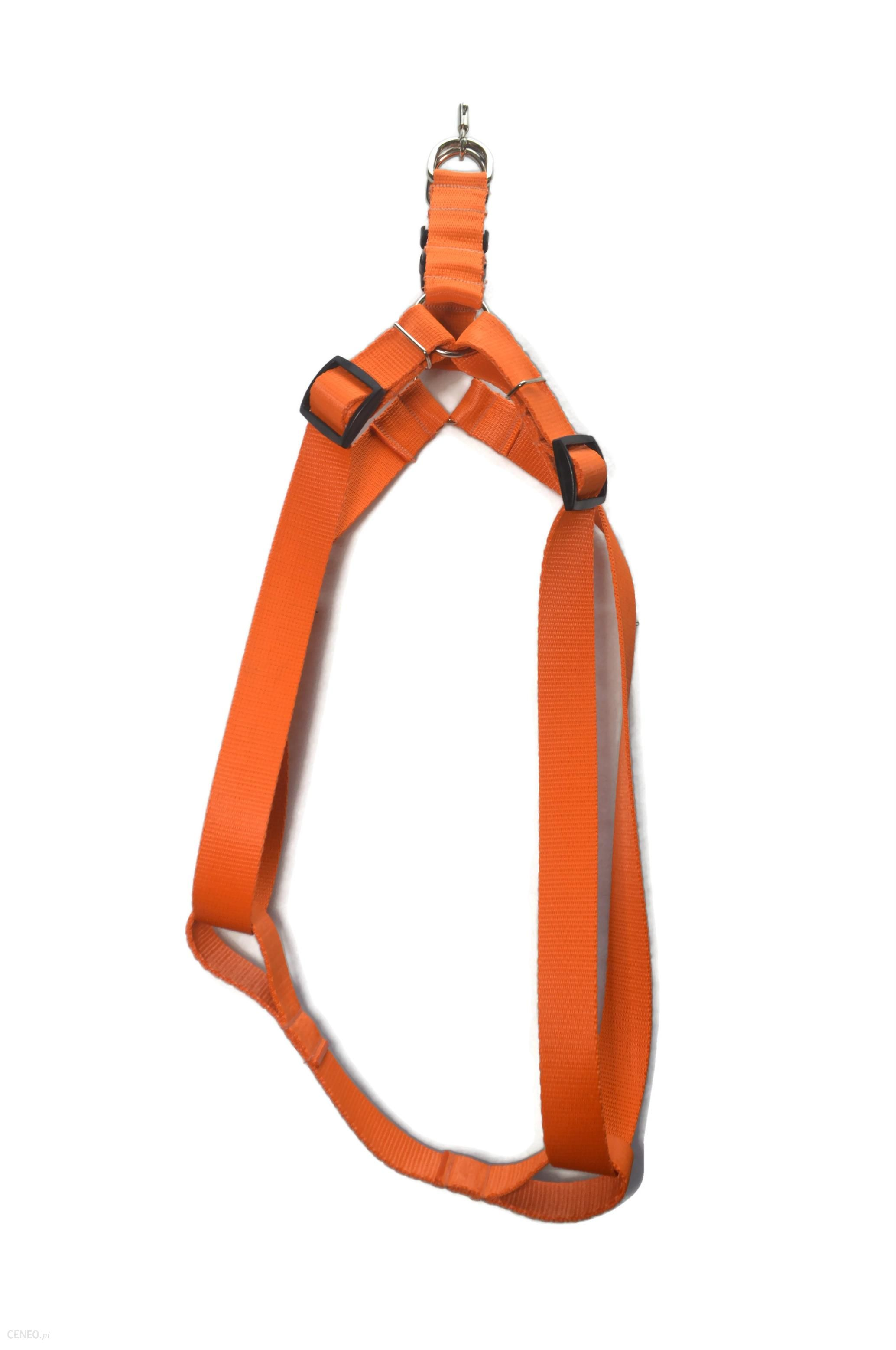 Alizoo Dla Dużego Psa 30mm Górne Zapięcie Pomarańczowy (A053)