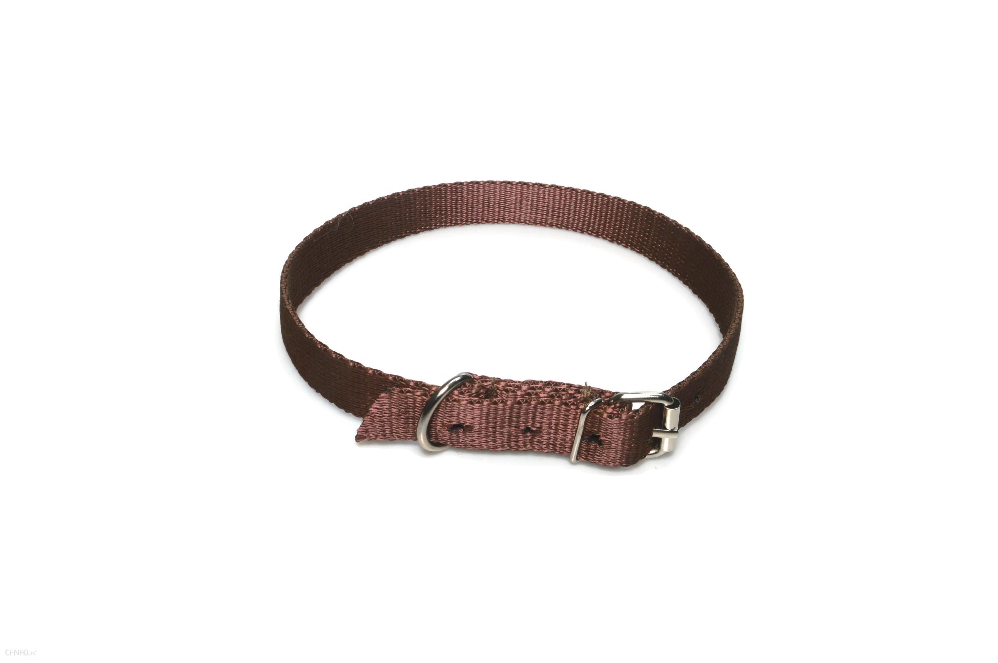 Alizoo Obroża dla dużego psa 25mm/44-59cm z metalową klamerką - (A011) Brązowy