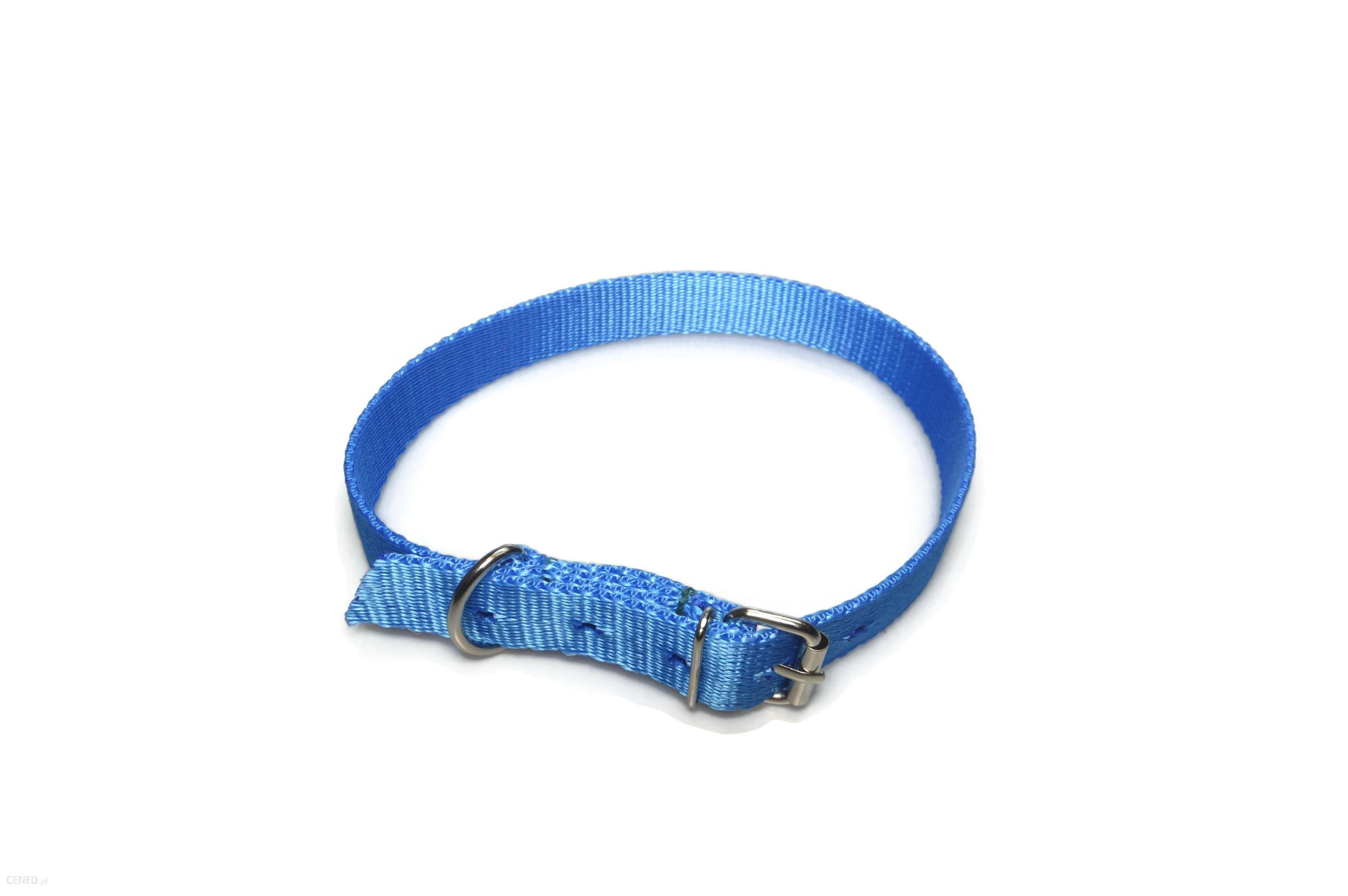 Alizoo Obroża dla dużego psa 25mm/44-59cm z metalową klamerką - (A011) Niebieski