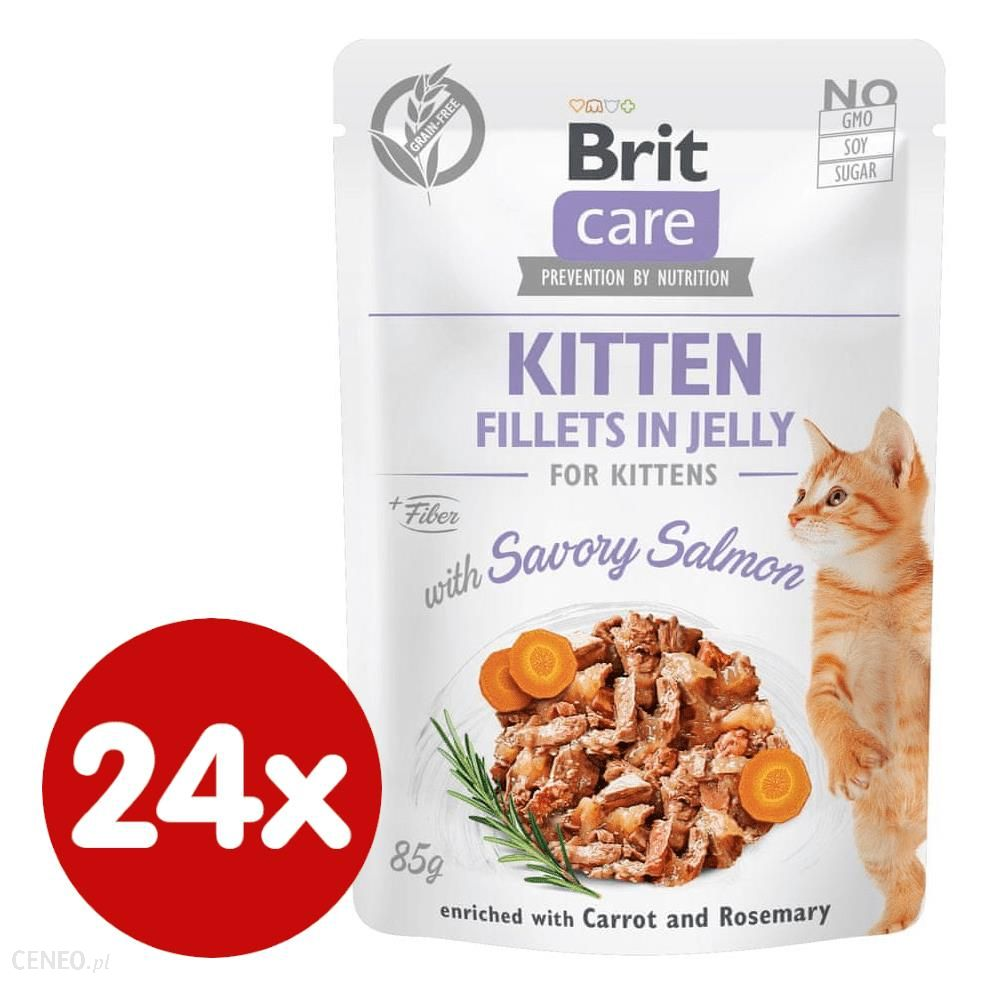 Brit Care Cat Kitten Fillets in Jelly with Savory Salmon 24x85g
