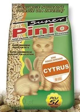 Certech Super Benek Pinio Cytrus 5L