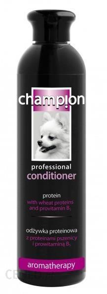 Champion Odżywka Proteinowa 250Ml