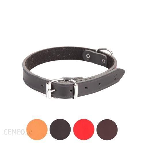 Dingo Obroża ze skóry podszyta filcem dla psa CLASSIC 13600