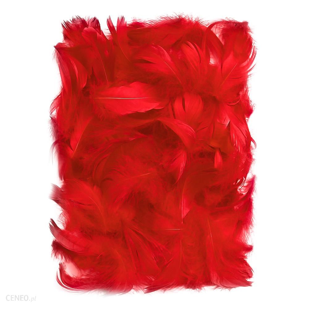 dp craft Piórka dekoracyjne 512 cm Red CEPI015