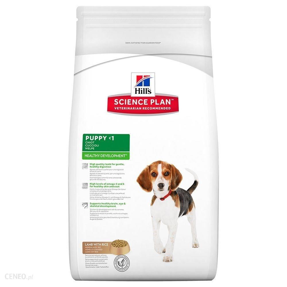 Hill's Science Plan Healthy Development Puppy Medium Jagnięcina Z Ryżem 3kg