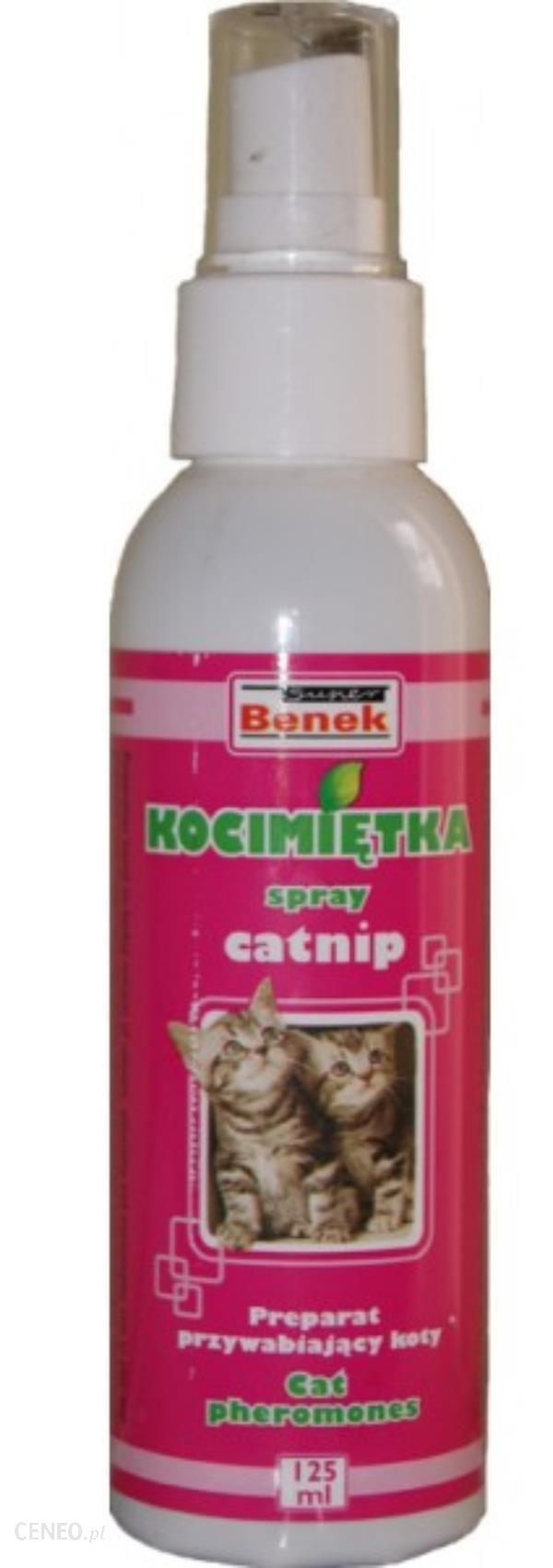 Kocimiętka Spray Przywabia Kocia Mięta Spray 125ml