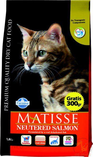 Matisse Neutered Salmon 1