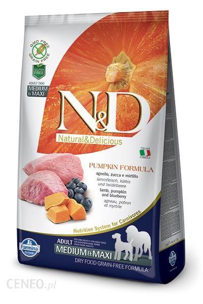 N&D Lamb & Pumpkin & Blueberry Adult Medium & Maxi 12kg