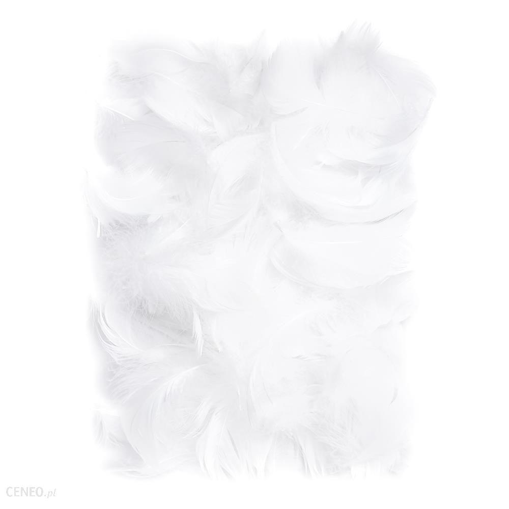 Piórka 5-12Cm 10 G White