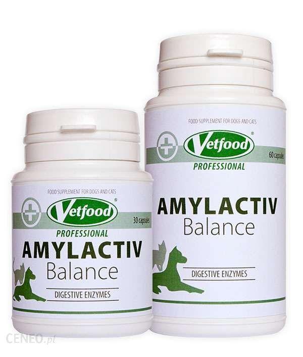 Regis Vetfood Amylactiv Balance 60 Kapsułek Zaburzenia Trawienia