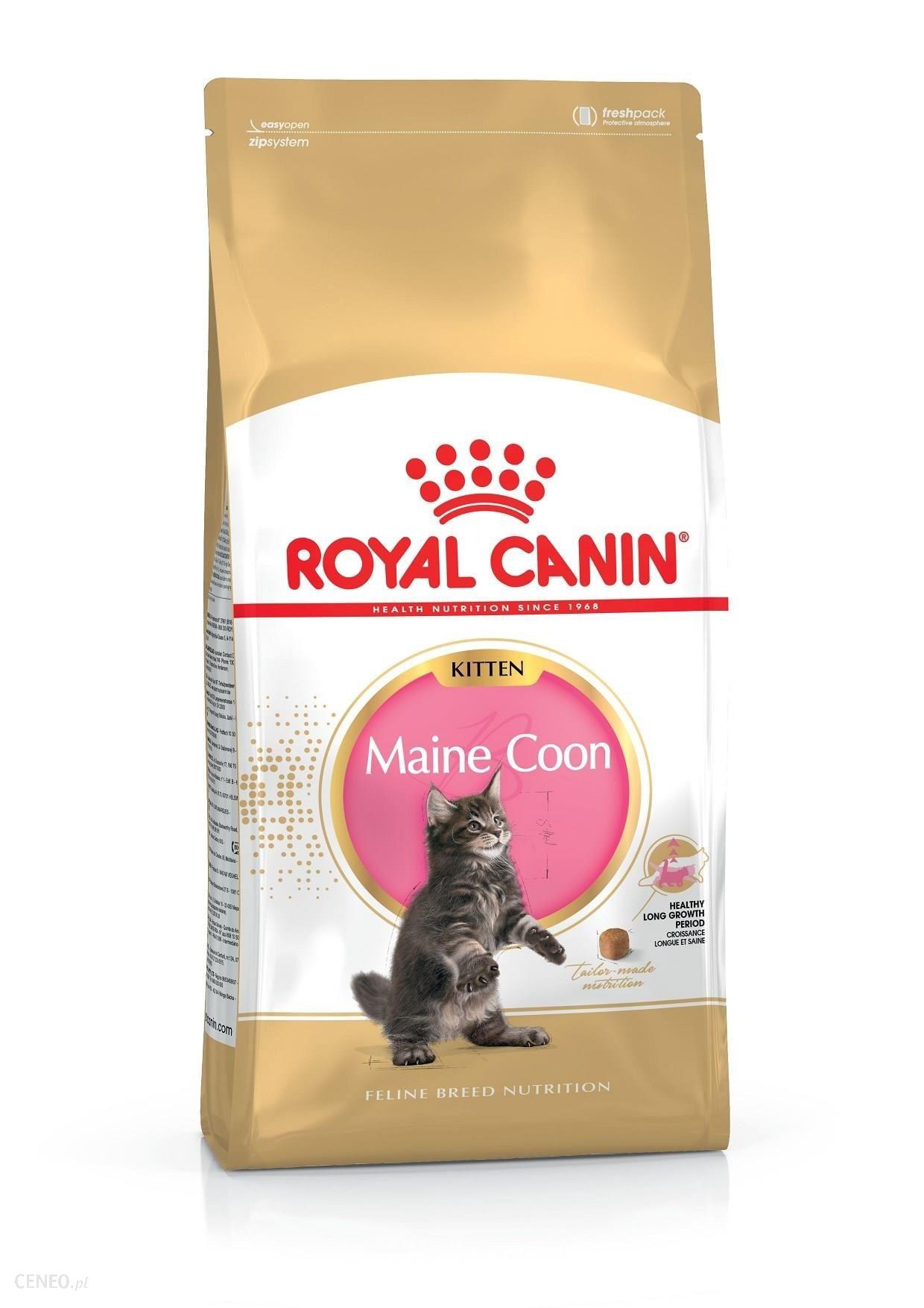 Royal Canin Maine Coon Kitten 2x10kg