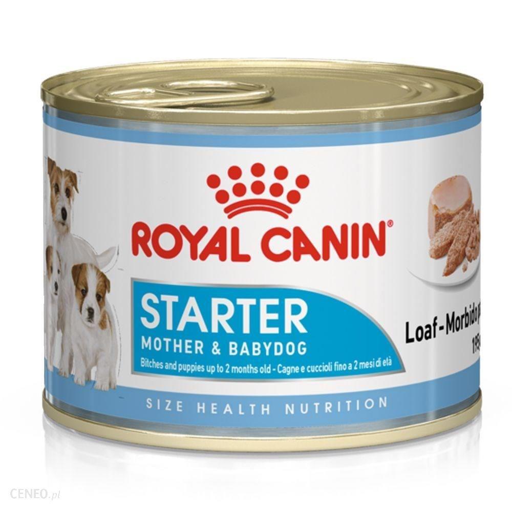 Royal Canin Starter Mousse Mother & Babydog 195g