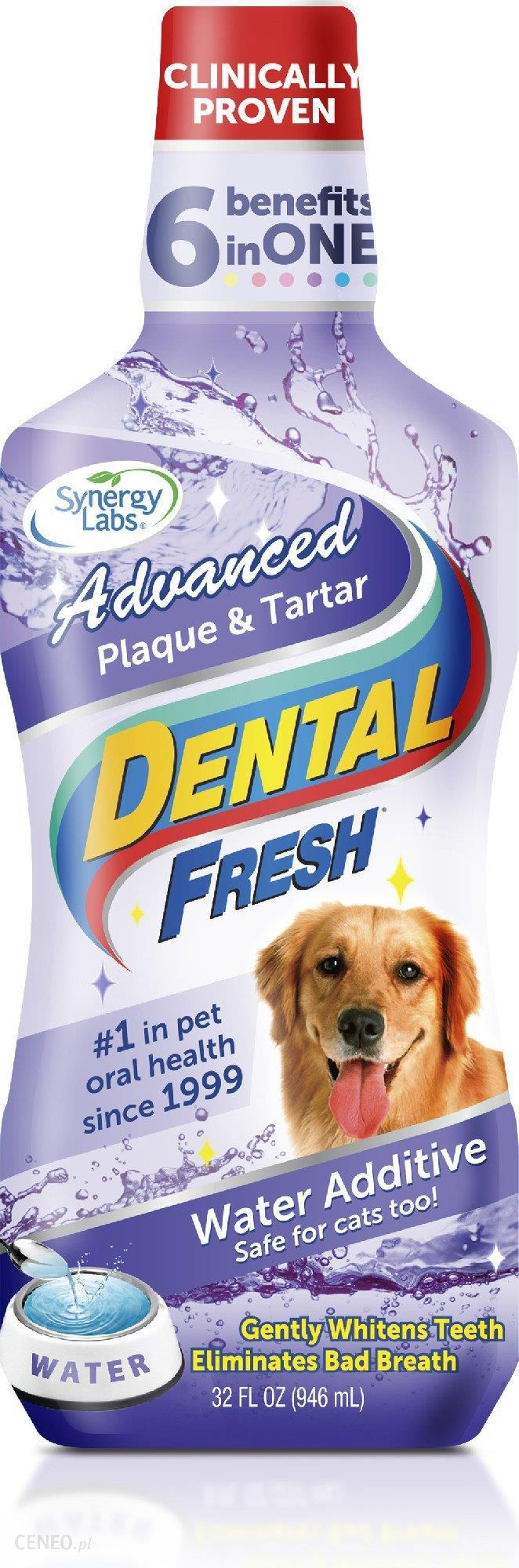 Synergy Labs Dental Fresh Kamień & Osad 1L