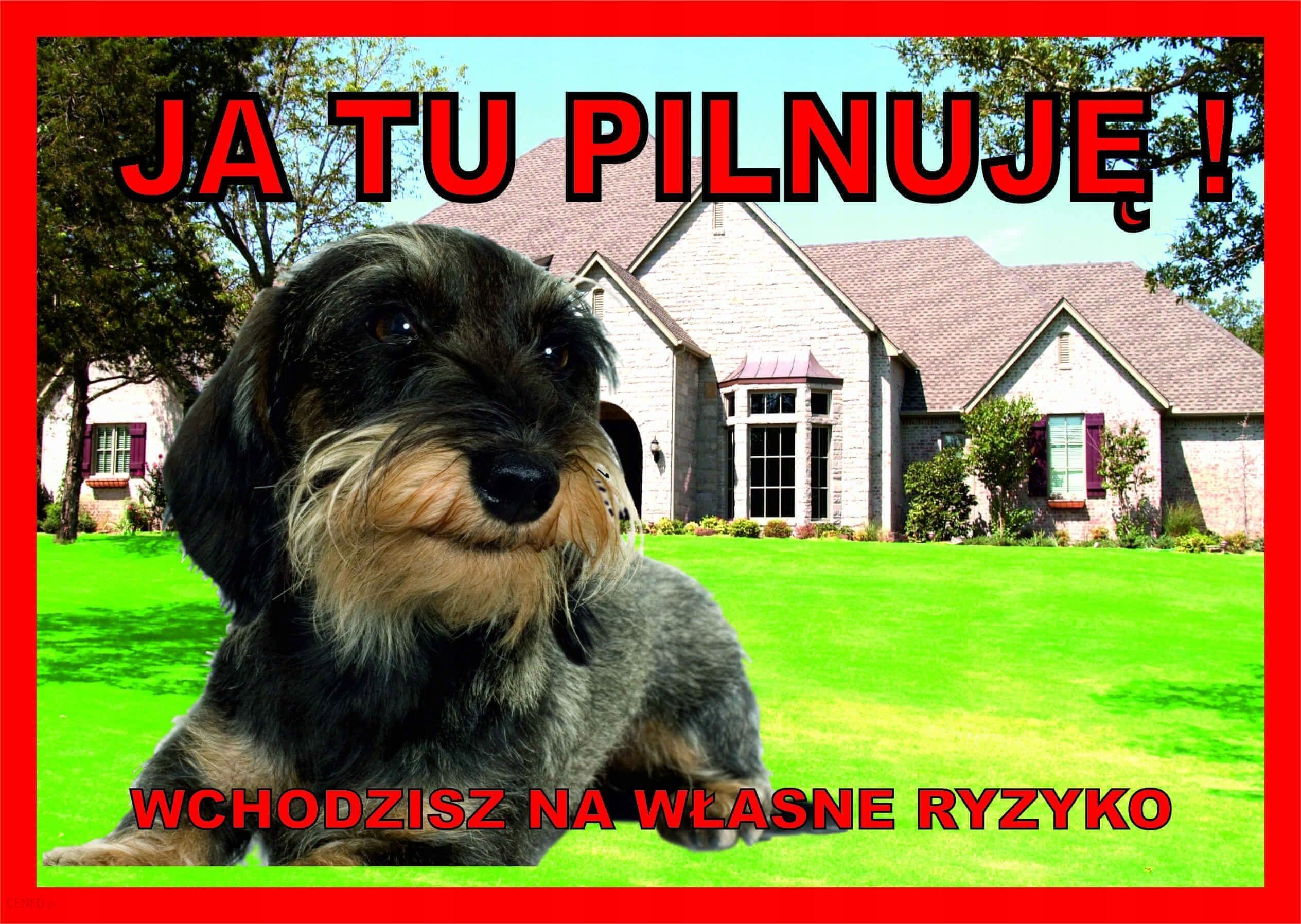 Tabliczka Ja Tu Pilnuję Ostrzegawcza Jamnik Szor.