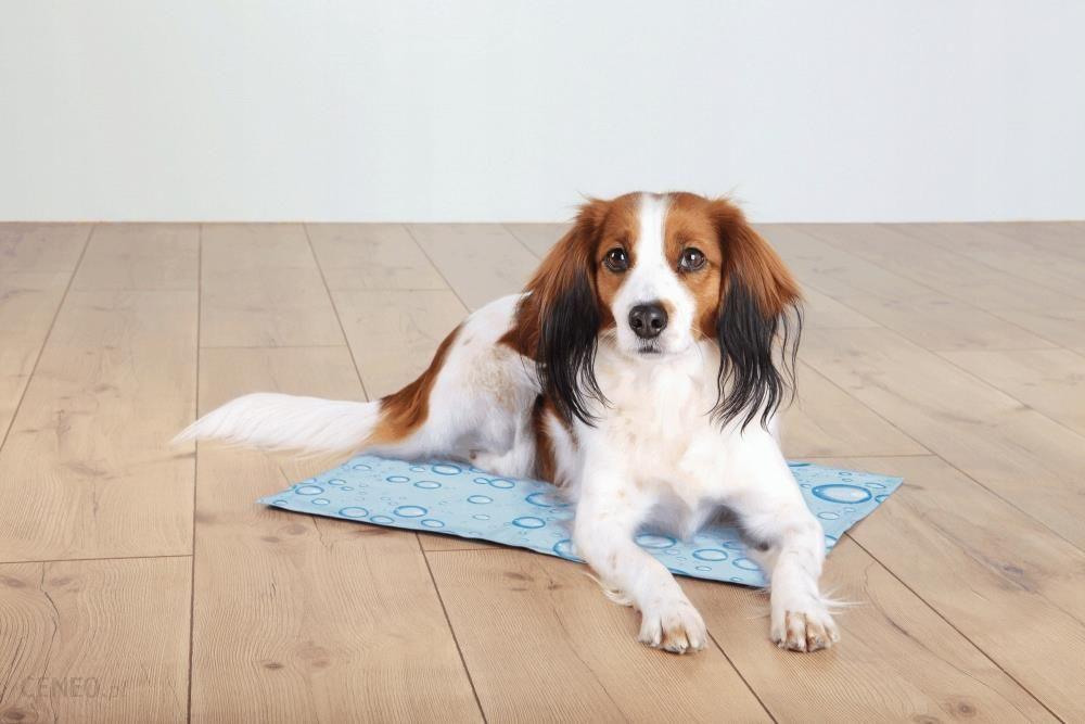 Trixie Mata chłodząca dla psa Lato Upał 65x50cm