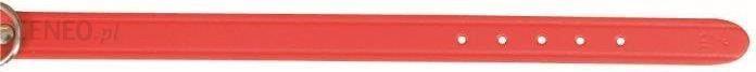 TRIXIE Obroża xs-s 24-29cm/12mm czerwona